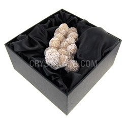 Fossils for sale Desert Rose gift box only £14.99