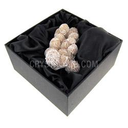 Fossils for sale Desert Rose gift box only £14.99