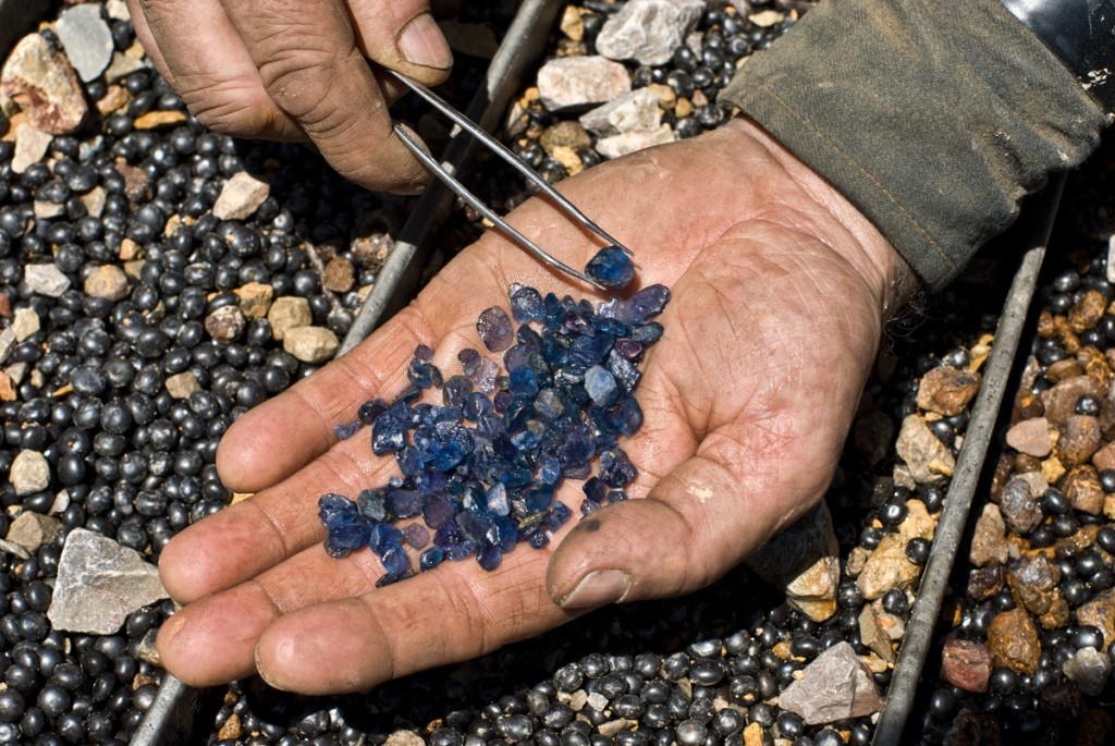 Sapphires from Roberts Yogo Sapphire Mine